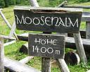 moosenalm-2_250.jpg